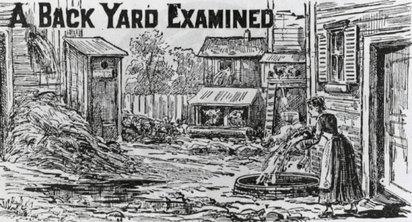A yard examined.  Backyard sanitation